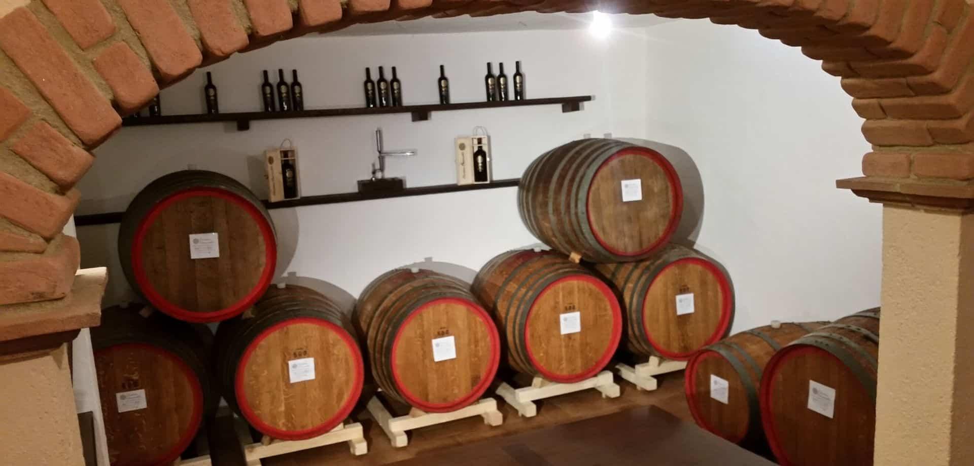 Degusta i vini: Mamoida in cantina