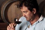degustare vini