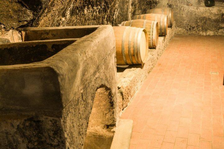esperienze vino