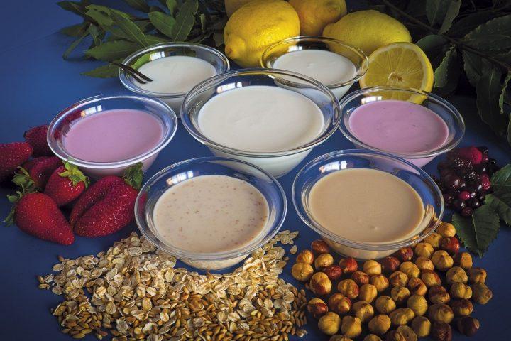 fare lo yogurt coi fermenti