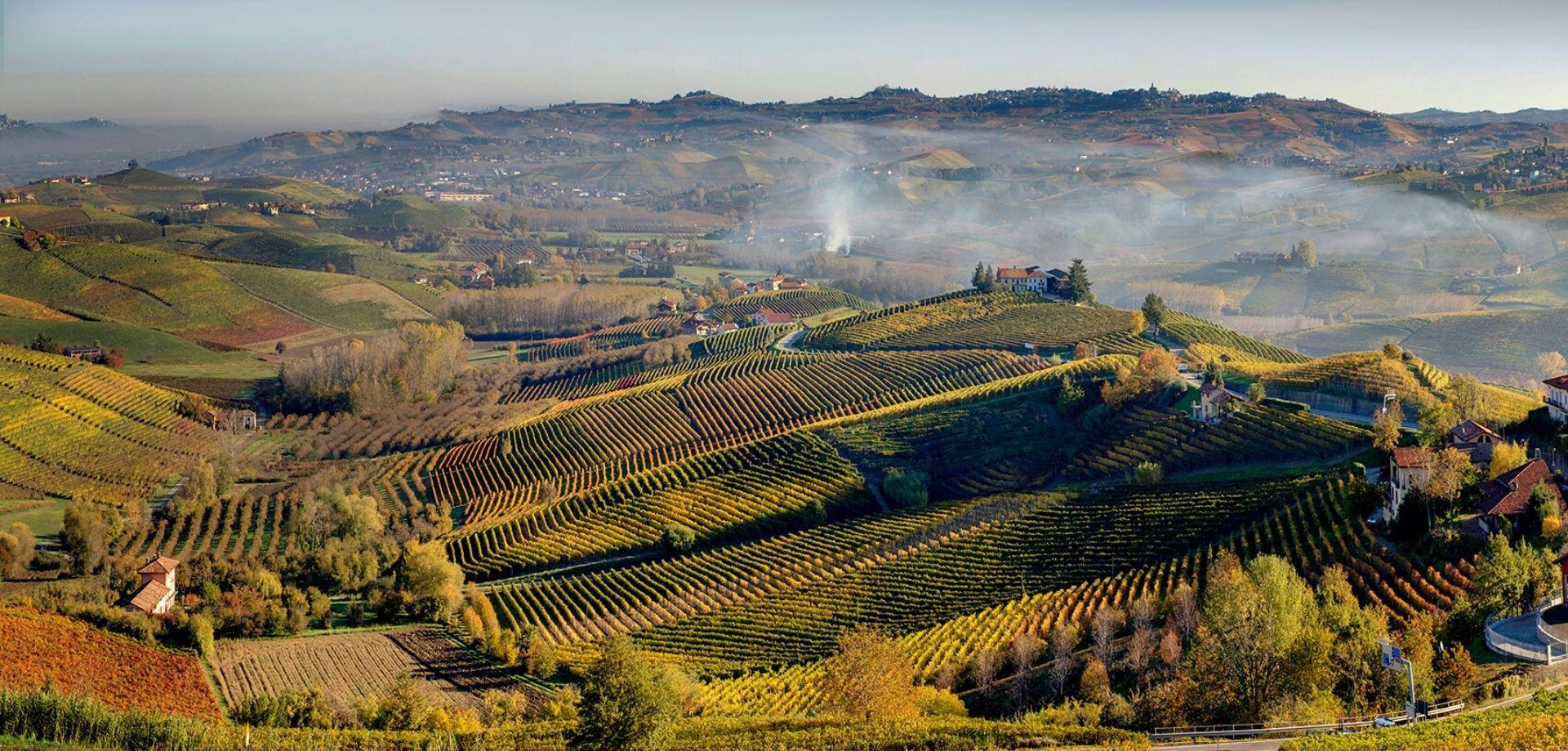 Degustazione vini nelle Langhe