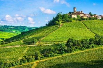 langhe e monferrato