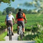 Giro in bici tra i vigneti a Montepulciano Image