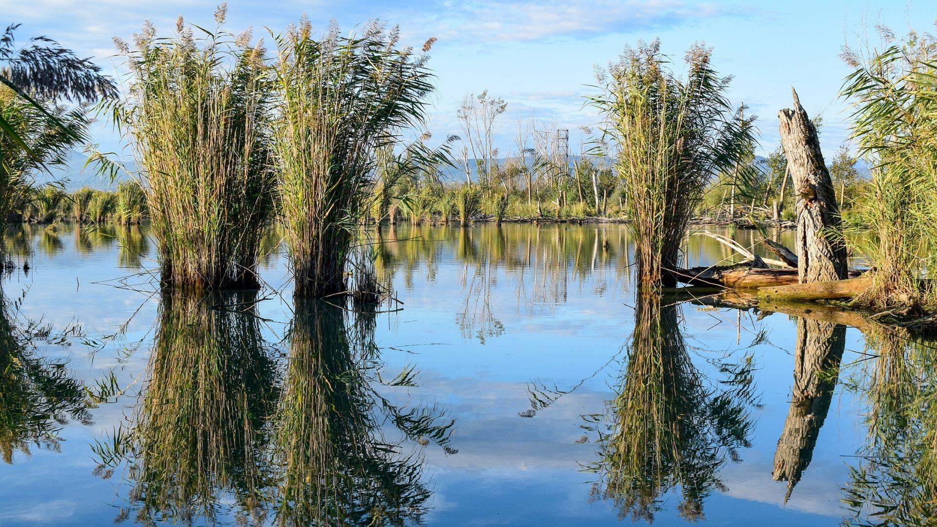 riserva naturale toscana