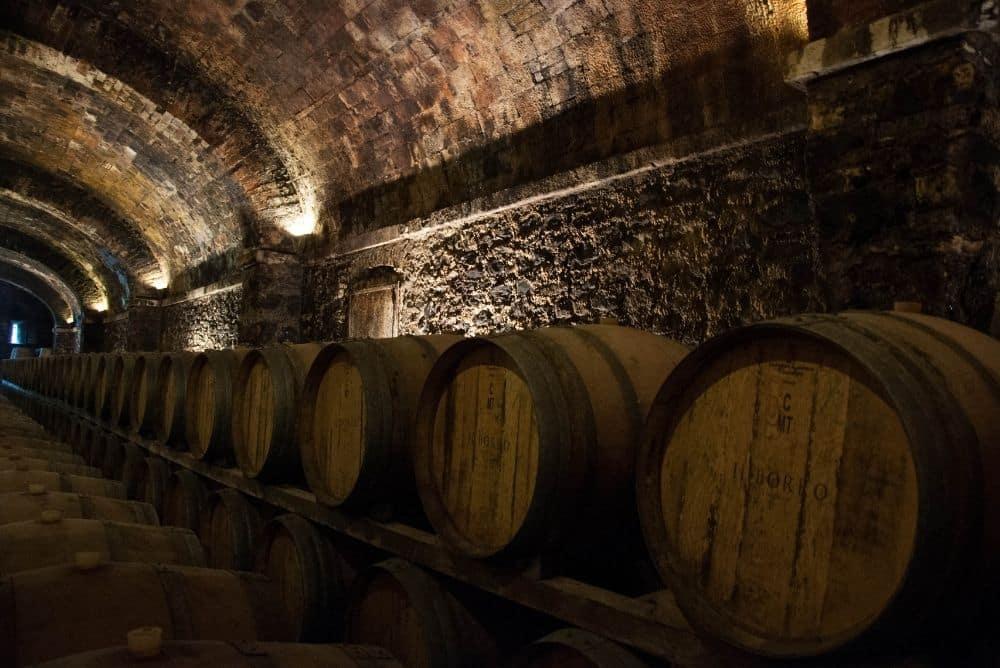 wine tours of italy