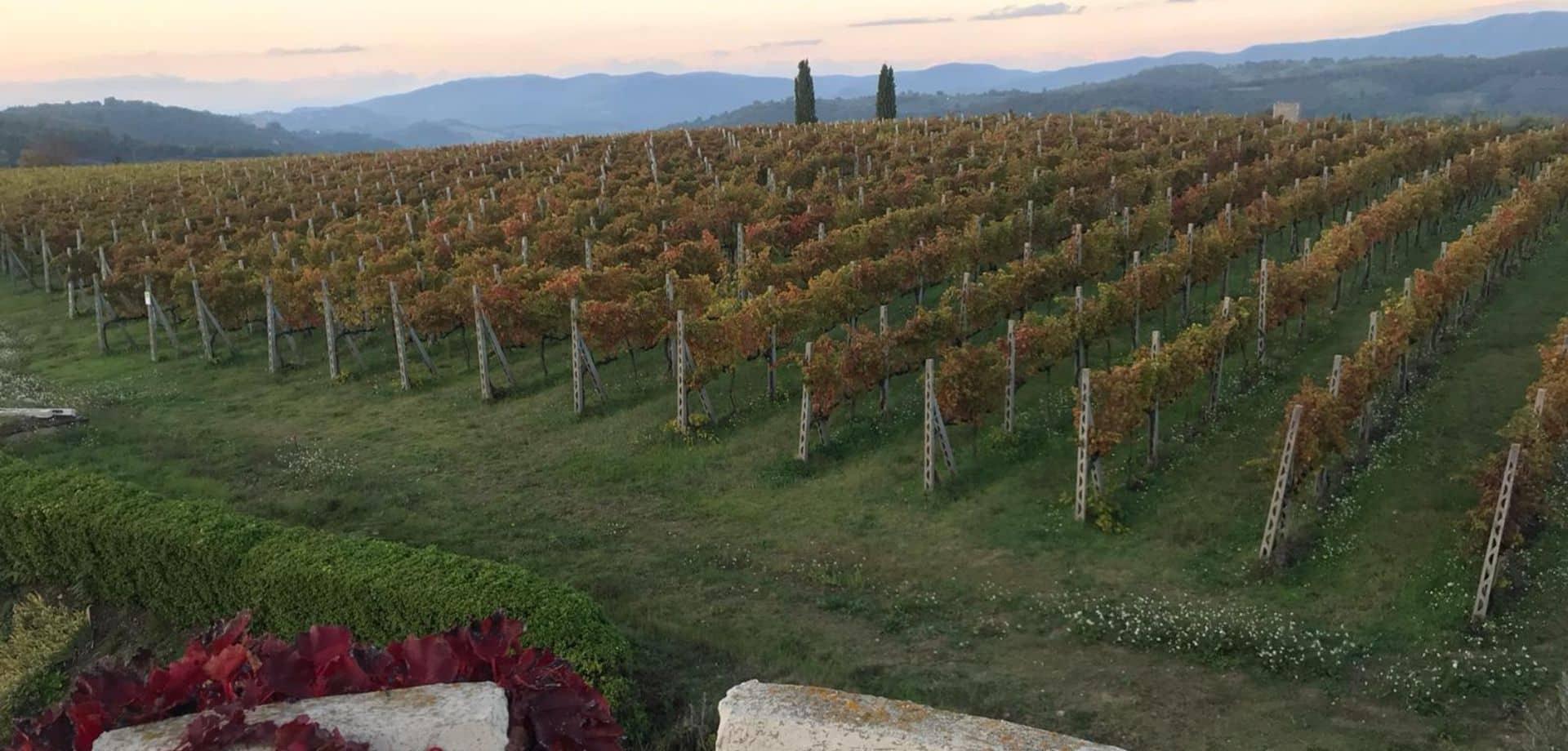 Trekking in Umbria con gusto
